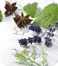 herbal_complexes_20140130_100520