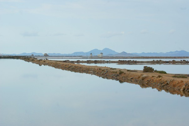 sal mar menor